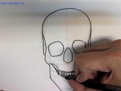Como dibujar una calavera paso a paso