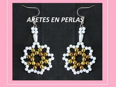 ARETES EN PERLAS.mostacilla, canutillo,perlas de colores