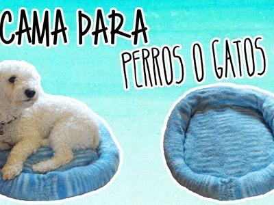 Como hacer una cama para perros.gatos, fácil - Tutoriales Belen