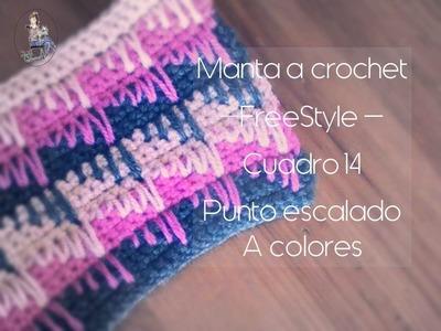 Manta a crochet FreeStyle cuadro 14: punto escalado de colores (diestro)
