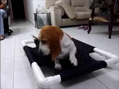 Tutorial - Hacer práctica cama para perros  paso a paso (Dog Bed) - Gabriel Serrano Díaz