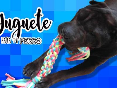 Cómo hacer un juguete para tu perro