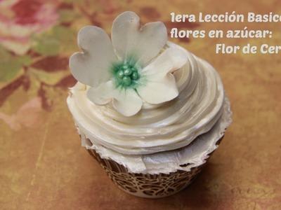 1era Lección Flores en Azúcar: Uso del Bolillo Flor de Cerezo