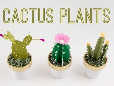 DIY Cactus Plants.  Cactus de Papel