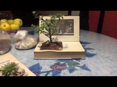 DIY Terrario Maceta Libro (Macetas Hecha con libros)