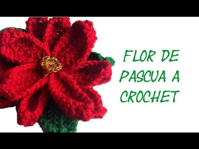 *Como hacer Flor de Pascua en Crochet* DIY