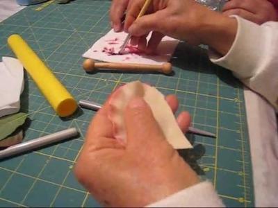 ROSA PREMIER 1a parte.wmv  1-2 Enero 2010