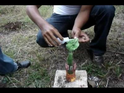 Bomba de Polvora y Bomba Molotov en Jutiapa