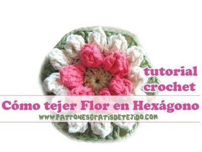Como tejer flor en hexagono al crochet