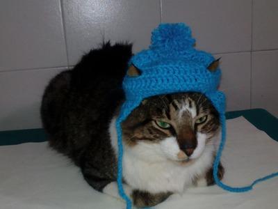 Gorro en Crochet Para Perro y Gato