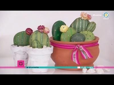 Cactus de piedras en Pura Vida, cada día