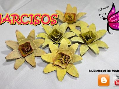 NARCISOS CON CARTON DE HUEVO
