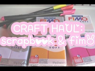 CRAFT HAUL 5:  Material scrapbook & fimo ♡