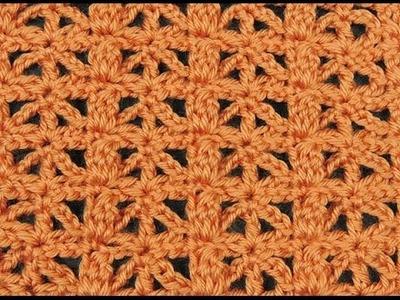 Crochet: Punto Combinado # 13