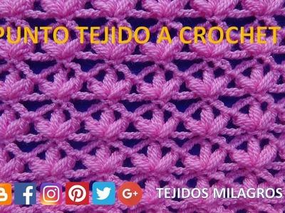 Punto a crochet N°21 para Chalecos, Blusas, Mantitas y chales