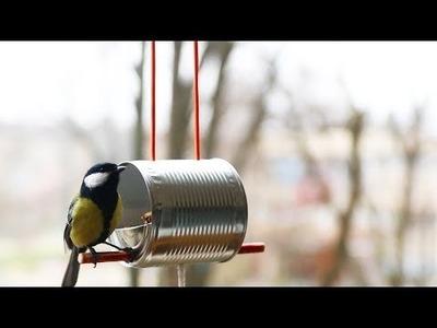 Cómo hacer un comedero para pájaros