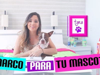 DIY ¡¡Decora tu cuarto con tus mascotas!!