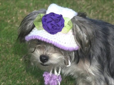 Gorro y sombrero para perro parte 1. how to crochet a dog hat. part 1