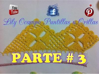 10.- PUNTILLA  AMARILLA PARTE 3 DE 3