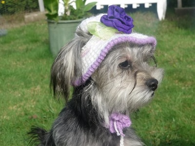 Gorro y sombrero para perro parte 2. how to crochet a dog hat. part 2