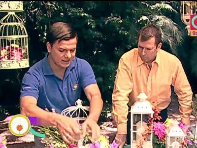 Refresque su hogar con jaulas, faroles y flores