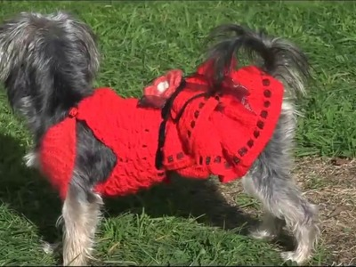 Cómo hacer vestido para perra.How to crochet a dress for dogs