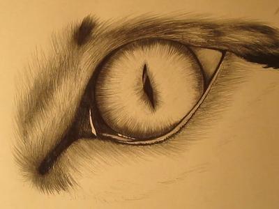 Cómo dibujar el ojo de un gato a lápiz paso a paso
