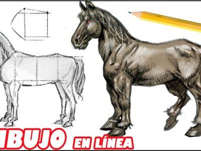 Como dibujar un caballo (explicado paso a paso)