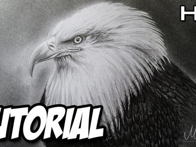 Cómo dibujar un Águila Realista a lápiz paso a paso, cabeza de águila