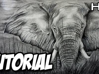 Cómo dibujar un Elefante Realista a lápiz paso a paso   Tutorial