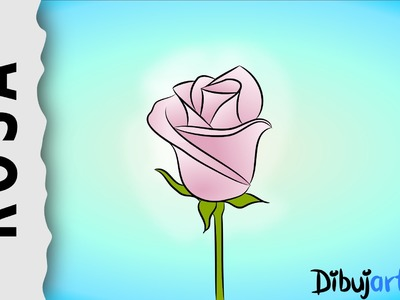 Cómo dibujar una Rosa #4 - Serie de dibujos de Rosas