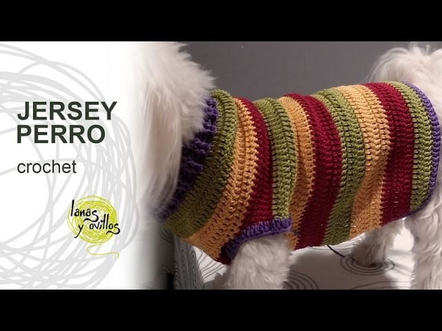 Tutorial Jersey Para Perro Crochet o Ganchillo
