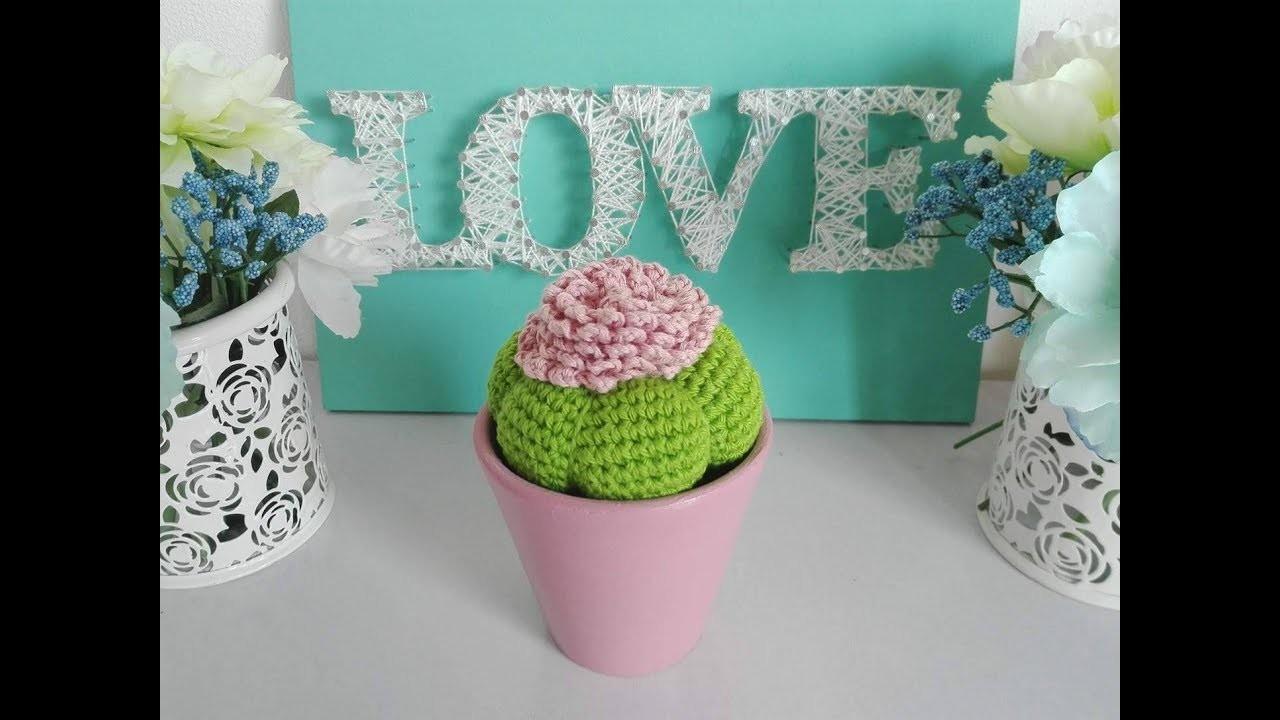 Crochet cactusAmigurumi cactusPickly pear cactusCactus | Etsy | 720x1280