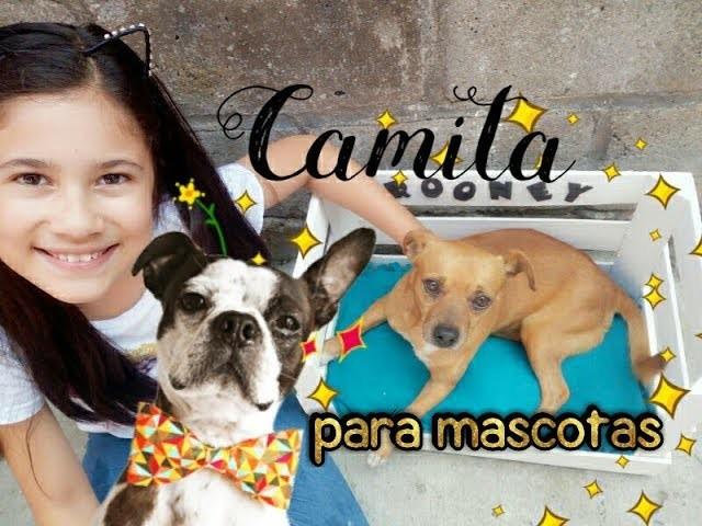 CAMA PARA MASCOTA. DIY HOW  TO MAKE BED PET #ilovedogs