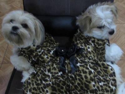 DIY-RECICLANDO-De un polo, dos lindos vestidos para mis mascotas.