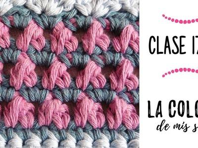 LA COLCHA DE MIS SUEÑOS: CLASES 17 Y 18 | punto rosas en botón y punto inca a crochet