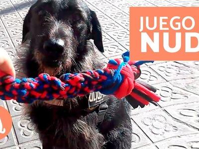 JUGUETES para PERROS - MORDEDOR CASERO para perro
