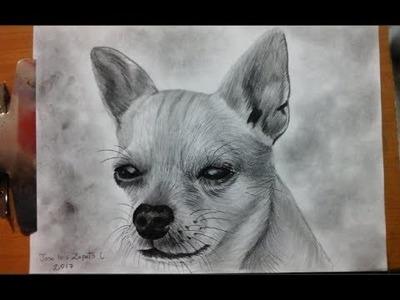 Dibujo de un perro chihuahueño  Camara rapida - How to draw a chihuahueño dog  HD