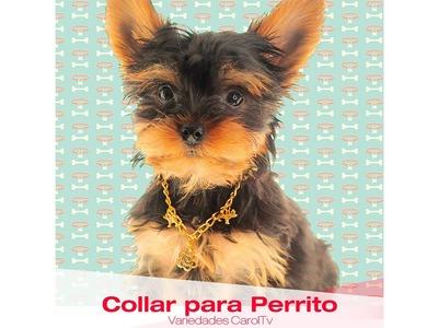 Aprende Rápido y Fácil Cómo hacer un Collar para Perrito - Variedades y Fantasías Carol