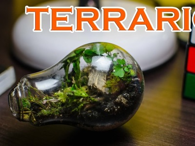 Como hacer un terrario con una bombilla de cristal