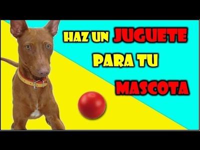 COMO HACER UN JUGUETE PARA TU MASCOTA   HOW TO MAKE A TOY FOR YOUR PET  