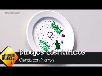 Marron nos enseña cómo hacer dibujos animados científicos - El Hormiguero