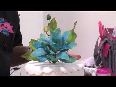 Como hacer flores de lotus en pasta de azucar - Hogar Tv  por Juan Gonzalo Angel