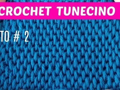 Crochet tunecino puntos para coleccionar