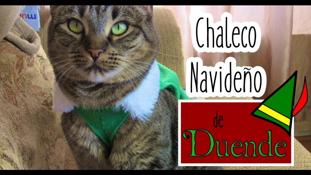 DIY Chaleco Navideño de Duende para Gato