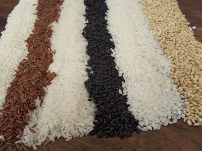 Las variedades del arroz en Argentina
