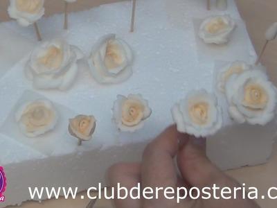 Boquillas y Materiales para Hacer Rosas con Royal Icing