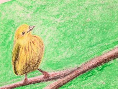 Ténica de dibujo: Aves realistas con Triángulos mágicos