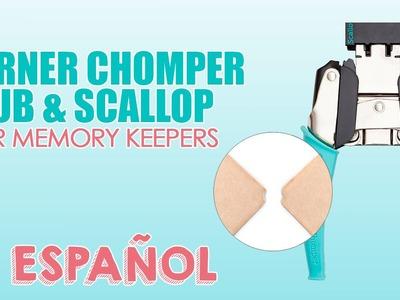 Corner Chomper Stub&Scallop en Español