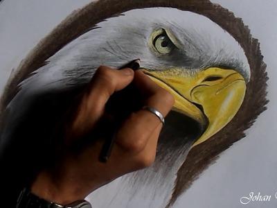 Como Dibujar Un águila. How to draw an  Eagle